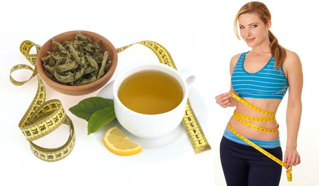 11 loại trà có khả năng giảm cân hiệu quả tốt nhất